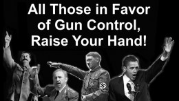 Gun control the final solution