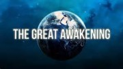 awakening brain consciousness